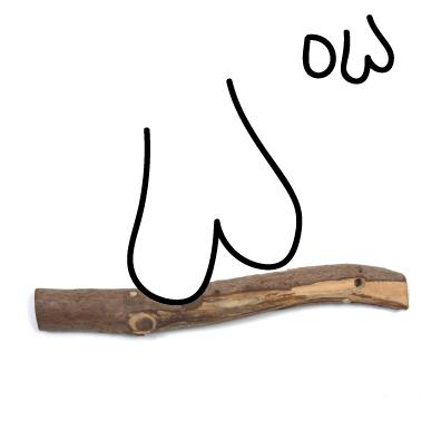 buttcheek-on-stick